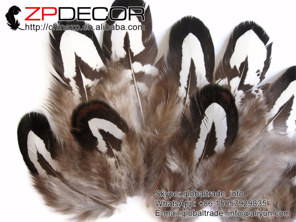 Tiny Black and White Reeves Venery Pheasant Plumage feathers (1)
