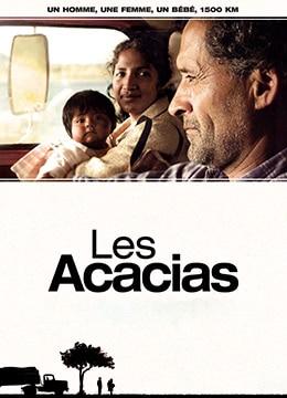 《相思树》2011年西班牙,阿根廷剧情电影在线观看