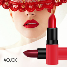 Rouge Matte Lipstick Makeup Long Lasting Waterproof