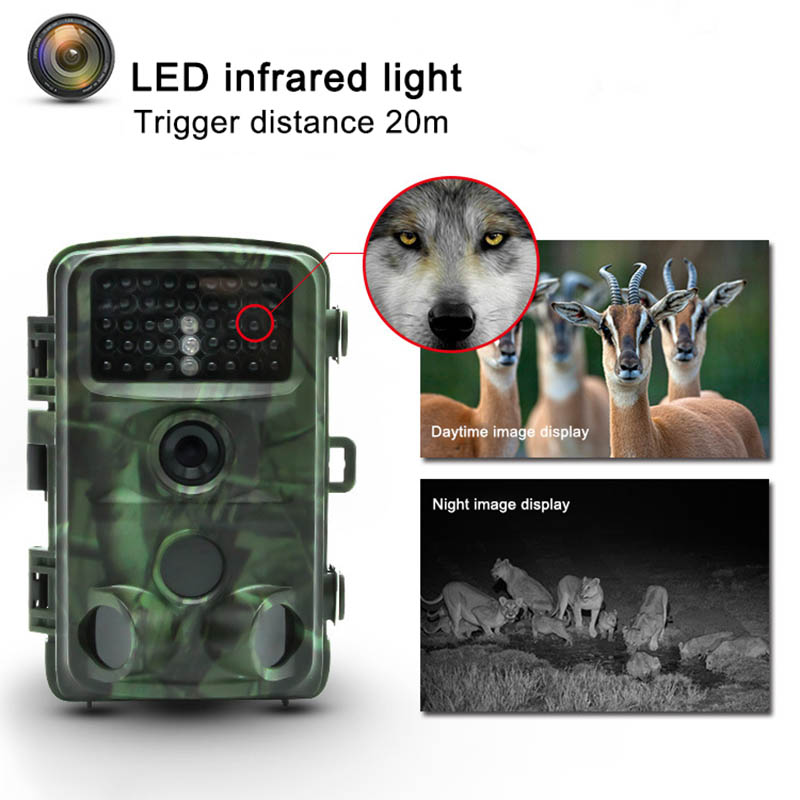 16MP Wild Hunting Camera IR LEDs Night Vision Camcorder Waterproof Scouting Camera ASD8816MP Wild Hunting Camera IR LEDs Night Vision Camcorder Waterproof Scouting Camera ASD88