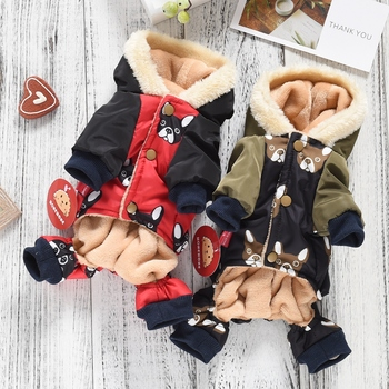 French Bulldog Costumes 5