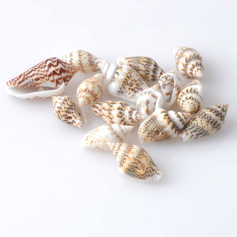 13-16mm Leopard Print Natural Spiral SeaShell Scrapbook Craft For Home Decoration DIY 200pcs TRS0057