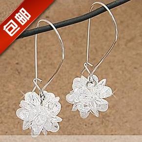 Popular accessories icepatterned long hook crystal earrings vintage