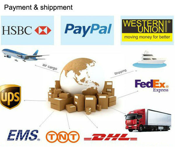 Checkout Link Pay on Your Order - DHL fedex UPS TNT air mail shippig