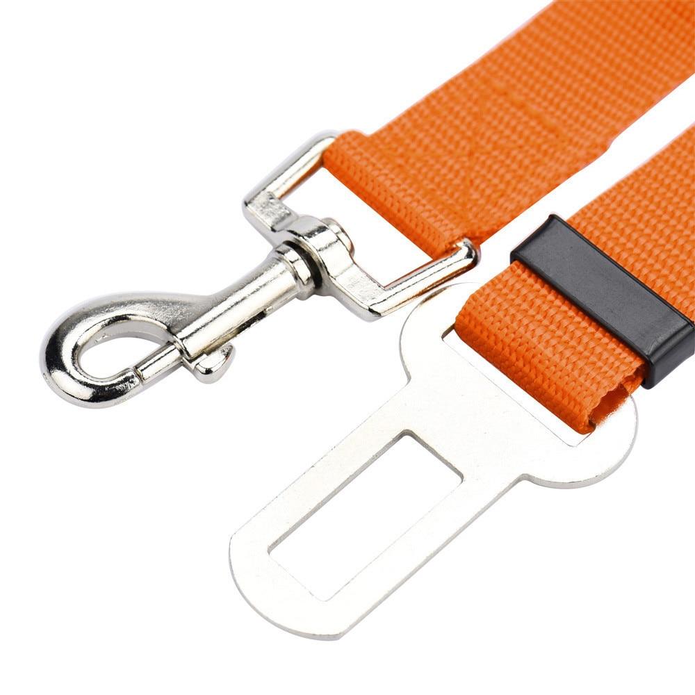orange belt leash