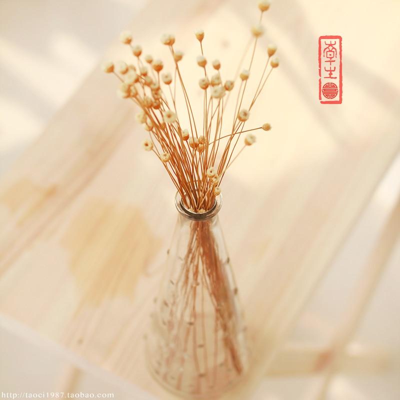 Zakka Ikea Eiffel Tower Glass Vase Hydroponic Cone Flower