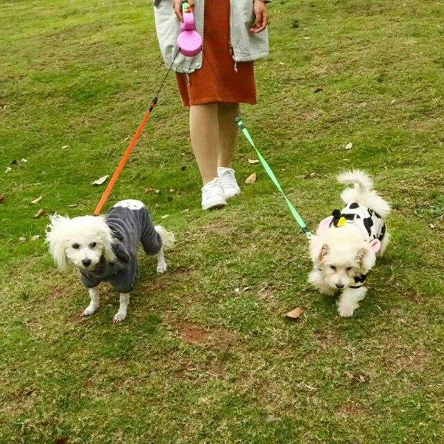 Laisse r tractable Double pour chien de compagnie Laisse de marche longueur 3 M Double laisses