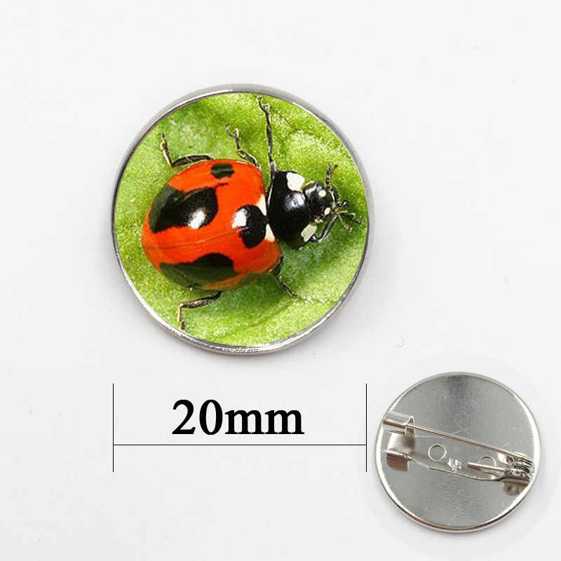 Unico Beetle Coccinella Spilla Bella Insetto Modello Spilla Pins Gioielli Fatti A Mano In Vetro Cabochon di Alta Qualità Per Amico