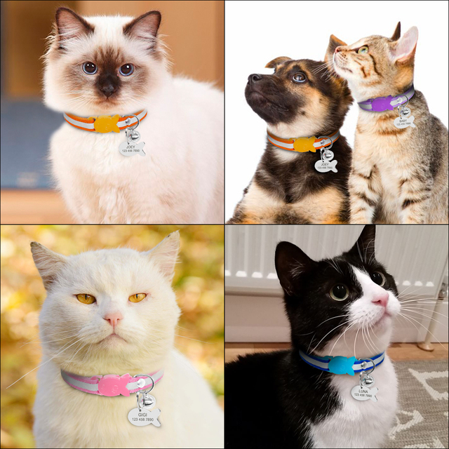 Cat's Fish Buckle Striped Collar 5