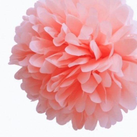 Online shop 10 inch 25cm tissue paper flowers pom poms balls 10 inch 25cm tissue paper flowers pom poms balls lanterns party decor for wedding decoration multi 13 color for choose mightylinksfo