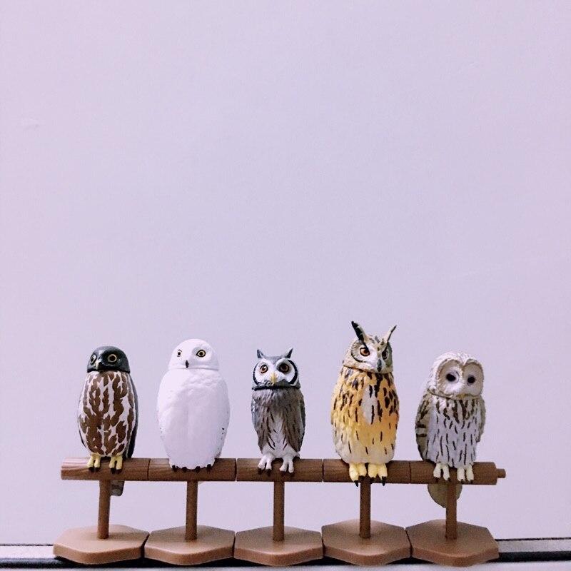 pvc figure owl 5pcs/set the head can move