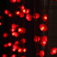 220V 110V Traditional Chinese Style Red Lantern LED String Lights Spring Festival Colorful Mini Rope For