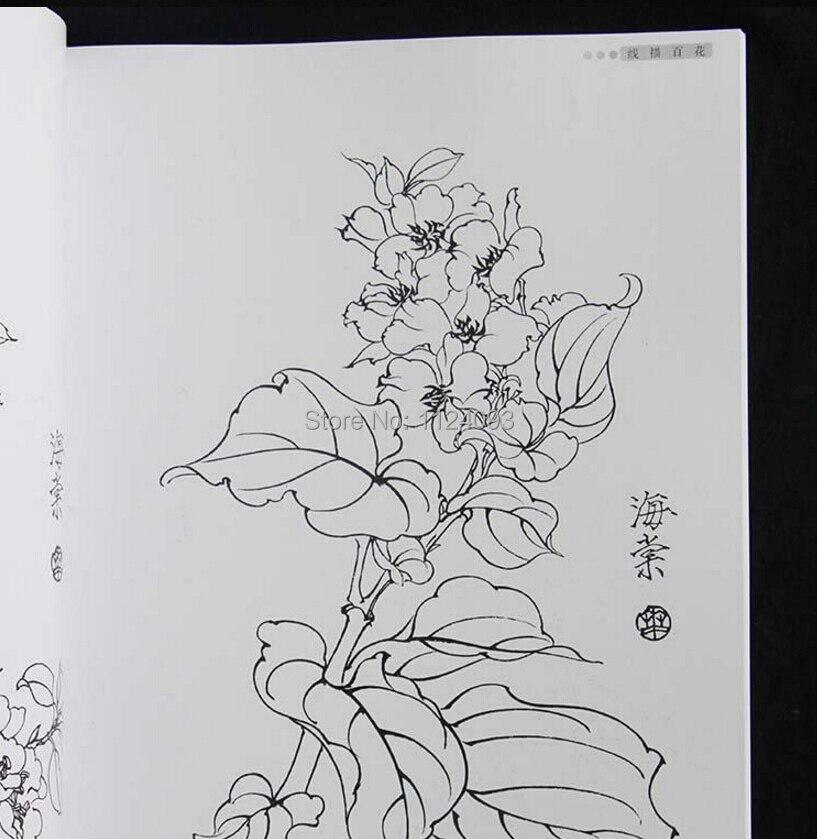 زهرة الصينية Gongbi خط الرسم رسم اللوحة الصينية كتب للمبتدئين سهلة