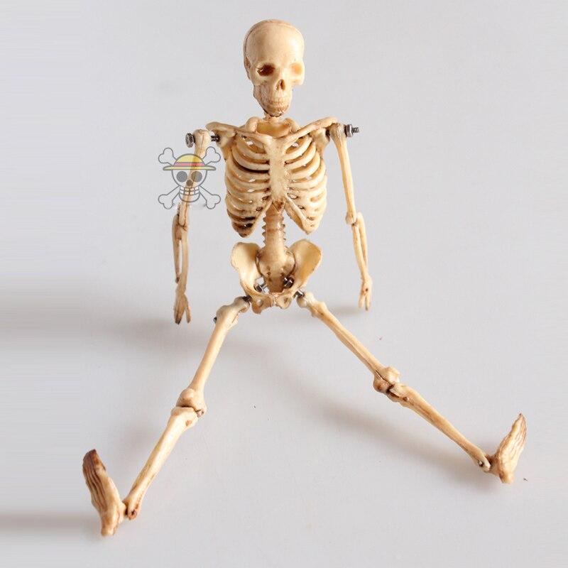 Dorable Esqueleto Detallada Patrón - Imágenes de Anatomía Humana ...