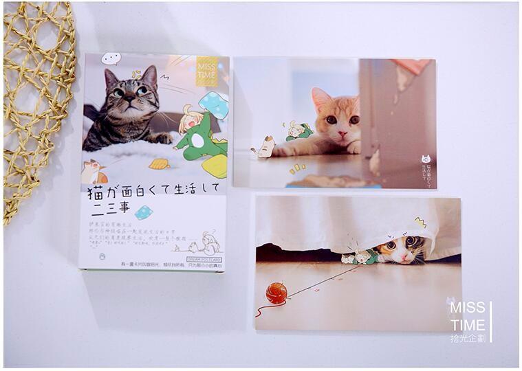 Набор открыток 30 шт. с котиками | Aliexpress