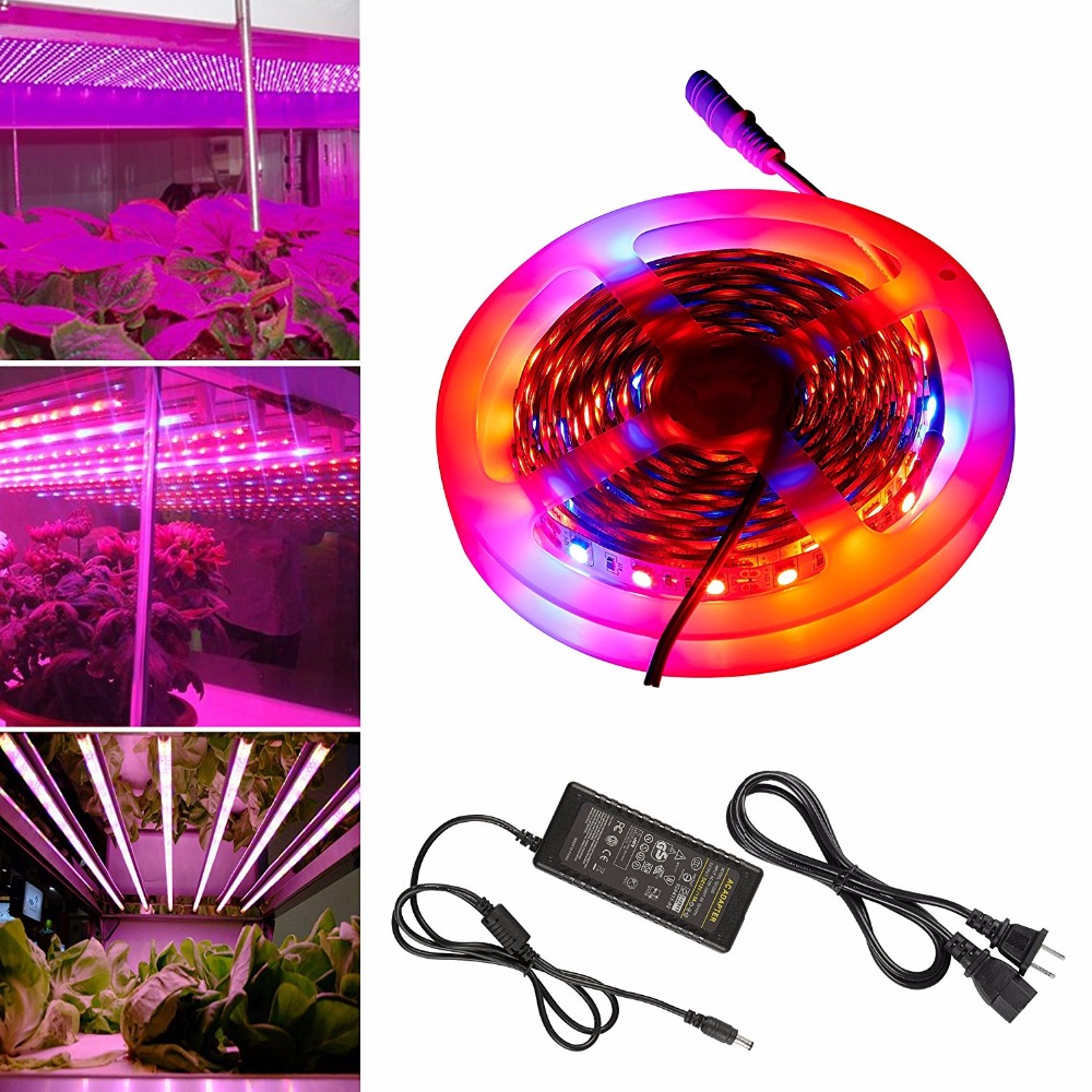 5m LED Grow Lights Growing LED Strip 5050 IP20 Plant Growth Fita de Light for Greenhouse Hydroponic plant and power adatper5m LED Grow Lights Growing LED Strip 5050 IP20 Plant Growth Fita de Light for Greenhouse Hydroponic plant and power adatper