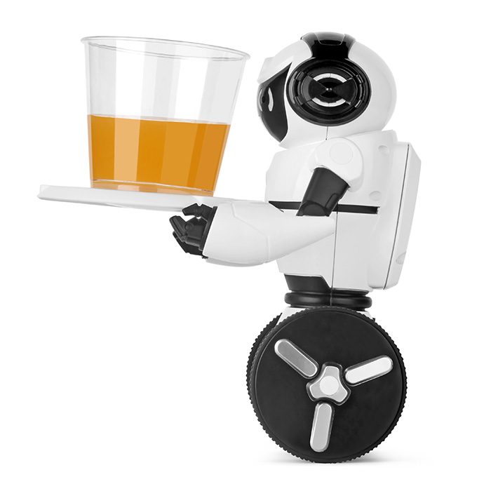 WLtoys F4 Avoi Танцы Режим Smart робот Wi-Fi Камера/Танцы/музыка/Жест/G-Датчик Управление /двухколесный/Self-баланс Технология