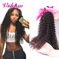 Malaysian Kinky Curly Virgin Hair V SHOW Hair Company 3pcs Malaysian Curly Hair Malaysian Virgin Human Hair Weaves Fast Shipping