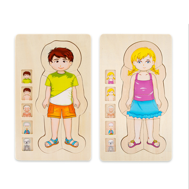 Wooden Human Body Puzzle