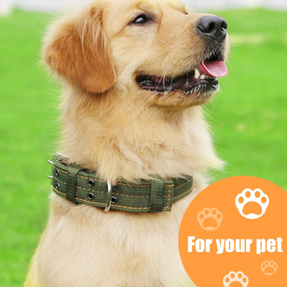 4 layer Thicken Nylon Pet Collar Medium and Large Dog Collar Double Breasted Big Dog Leash Lead Super Strong Traction Rope