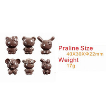 Bakeware Cartoon Characters Shape Poly-carbonate Chocolate Old Pastry Baking Tools