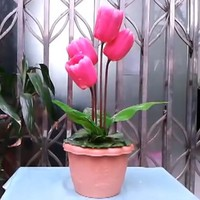 The Living Tulip Stage Flower Magic Trick Free Shipping Fire Magic Magic Trick Classic Toys