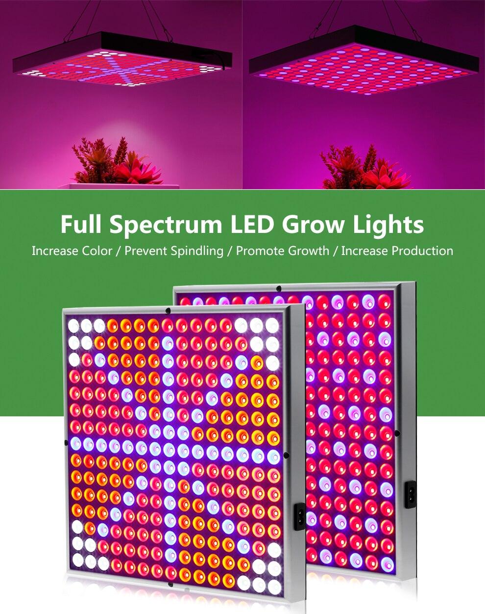 Full Spectrum Panel LED Grow Light (10)