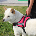 Big Dog Soft Adjustable Harness Pet Large Dog Walk Out Harness Vest Collar Hand Strap for Medium and Large Dogs Pitbulls