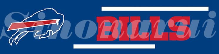 Buffalo Bills 17104