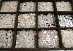 50 шт Ассорти Высокое качество Швабра оболочки ювелирных изделий Белая роза резной цветок кабошон оболочки ювелирных изделий бусины 8-12 мм