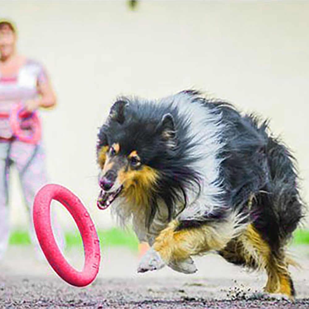 Новая собака летающие диски домашнее животное кольцо форма EVA жевательная игрушка кусающие зубы чистые плавающие жевательные игрушки Щенок смешные игры тренировочные принадлежности