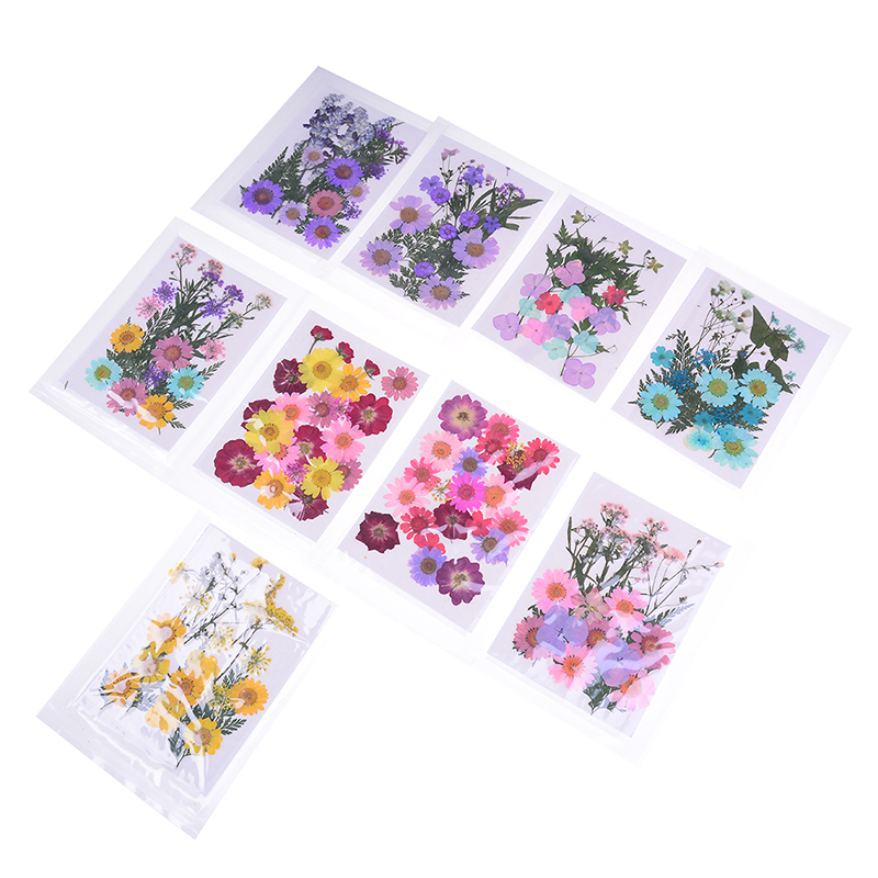 1 Pcs Beautiful Pressed Dried Flower Dry Plants For Epoxy Resin Pendant Necklace Jewelry Making Craft DIY Accessories