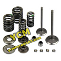 High Quality Valve Set Oil Seal Spring MAJESTY YP250 ATV 300 JL250 LH250 Engine Parts 1P69MM Scooter Motorcycle Wholesale YCM