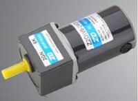 10W 24V DC External Brush Motor Dc Gear Motor Micro Gear Reduction Motors DC Gearmotor With