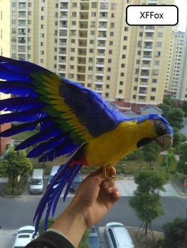 big real life parrot model foam&feather simulation wings blue&yellow parrot bird gift about 45x60cm xf0251