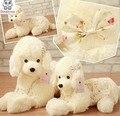 De gama alta de peluche de juguete muñeca del perro de caniche collie adornos de muñecas de juguete de Peluche de regalo de cumpleaños