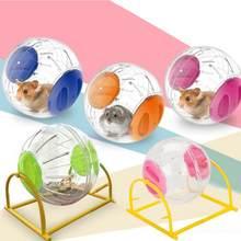 Hamster transparente corrida rack de bola, pet, roda de exercício, fonte de treino