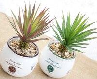 Piante fiore artificiale carnose pianta bonsai fiore artificiale decorazione della casa piante grasse In Vaso