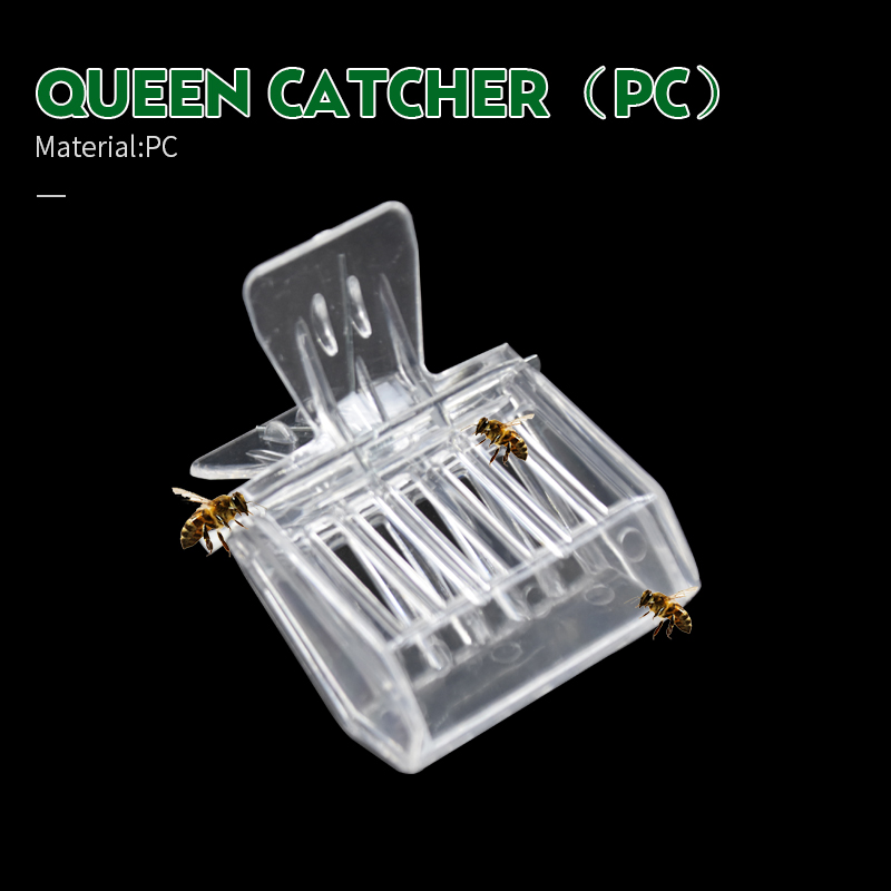 2 PCS Beekeeping Equipment Isolation Room Insectary Box Bee Tools Queen Cage Colorless Plastic Clip Bee Clip