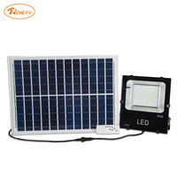 Renepv 50W solar lighting system solar panel for outdoor rechargeable wall lights green energy alternative lamp RDWP 50W