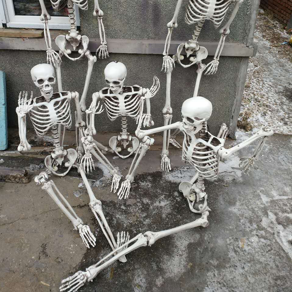 Life Size Pose N Stay Plastic Skeleton Outdoor and Indoor ...