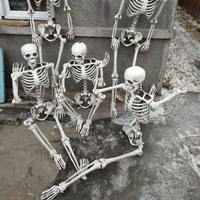 Life Size Pose N Stay Plastic Skeleton Outdoor and Indoor Halloween Decorations