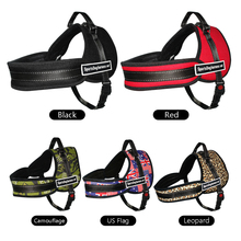 Training Nylon Dog's Harness