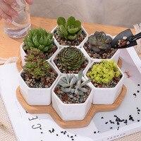 8pcs Set Decorative Geometry White Ceramic Flowerpot Succulent Plant Pot Bonsai Planter Porcelain Pot Garden Supplies