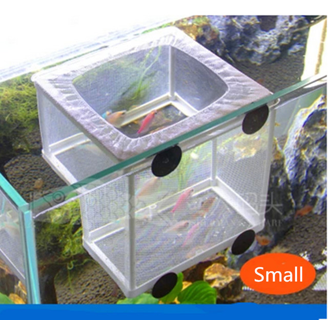 Aquarium breeder net 1000 aquarium ideas for Fish breeding tank