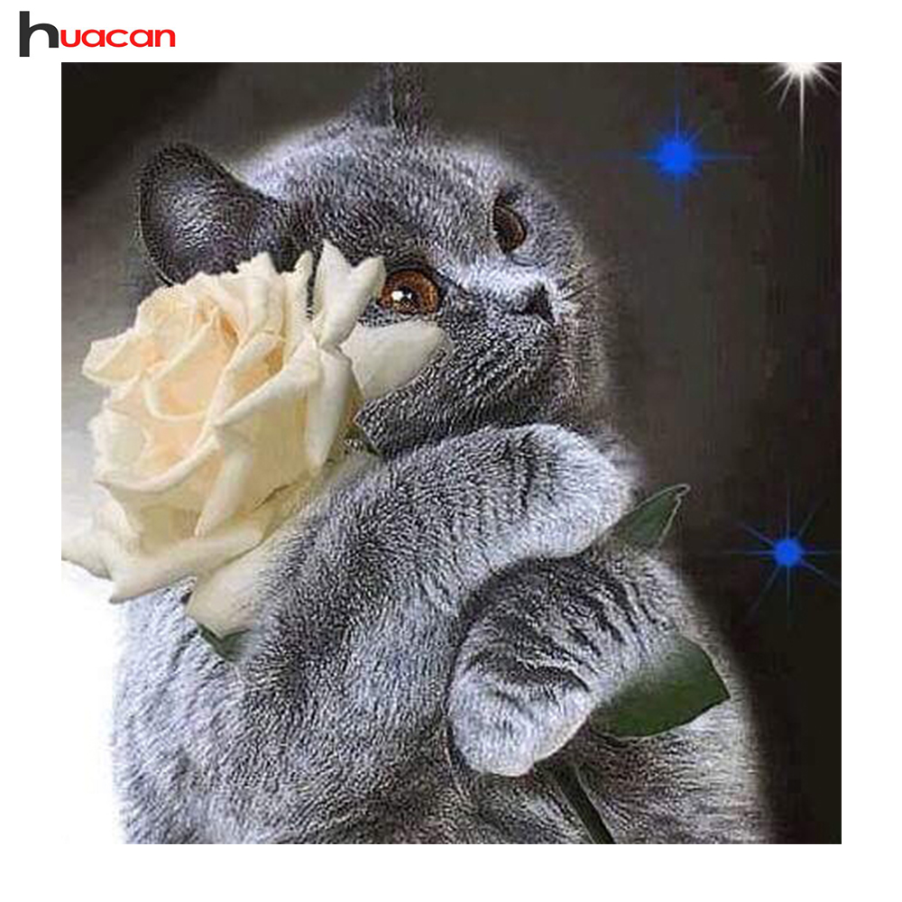 Huacan DIY Animal Diamond Painting Cross Stitch Full Square Diamond Embroidery Cat and Flower Mosaic Pictures of Rhinestones Huacan DIY Animal Diamond Painting Cross Stitch Full Square Diamond Embroidery Cat and Flower Mosaic Pictures of Rhinestones