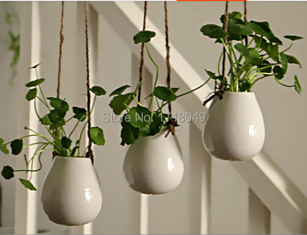 3PCS/Set White Egg Shaped Ceramic Wall Hanging Pots,Indoor Planter ...