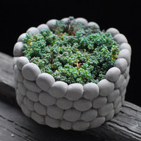 Aibei-creativo traspirante pietra vaso di fiori micro paesaggio rotonda succulente coltura idroponica cemento piccolo vasi da giardino