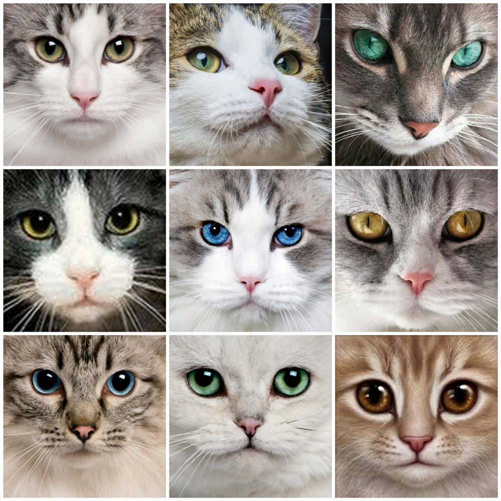 Huacan Diamond Embroidery Sale Cats Eye 5D Cross Stitch Diamond Painting Animal Rhinestones Square Full Drill Diamond Mosaic