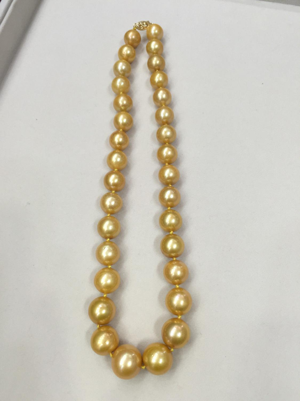 Beauté Strand/Chaîne 12-16mm mer du sud d'or collier de perles 14 k/20 or fermoir